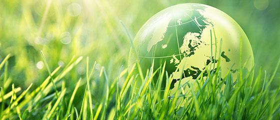 Greencold soluciones eficientes